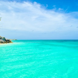Bucket List: The Bahamas Edition